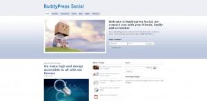 Social Theme